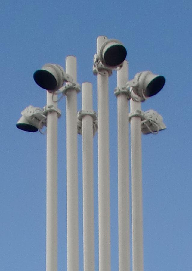 A041---verjongende-masten-groep-masten-foto-3